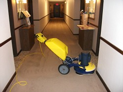 commercial carpet cleaning lincoln
