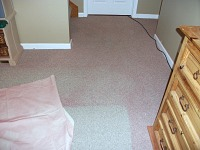 Carpet cleaning Lincoln - spray paint