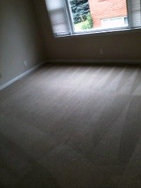 rental carpet cleaning lincoln ne