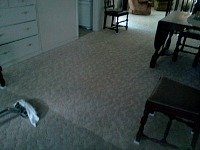 carpet cleaning lincoln nylon
