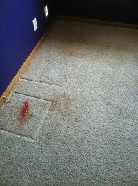 carpet cleaning lincoln ne - removing ink 1