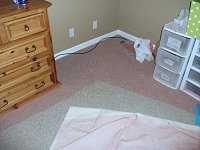 Carpet cleaning Lincoln - spray paint 1
